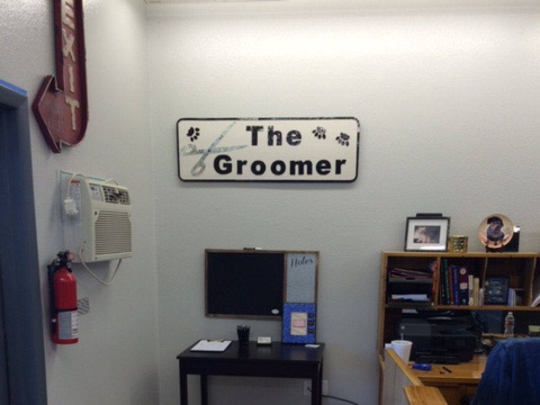 Doesn't Your Pet Deserve to Be Groomed by a Professional With </br>28 Years of Experience?